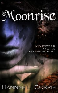 Book Cover: Moonrise: a Gay Sci-Fi Adventure